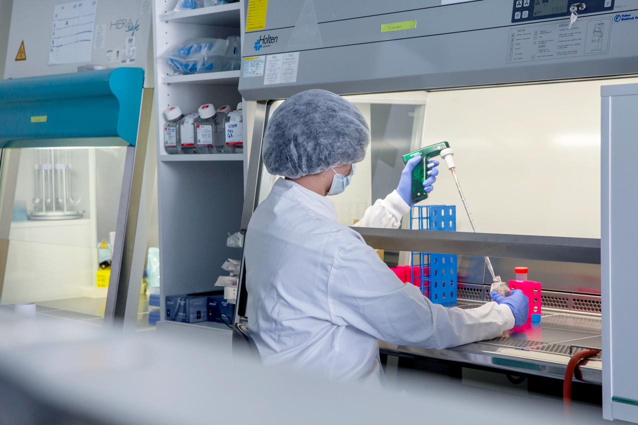 Recherche plaquettes sanguines